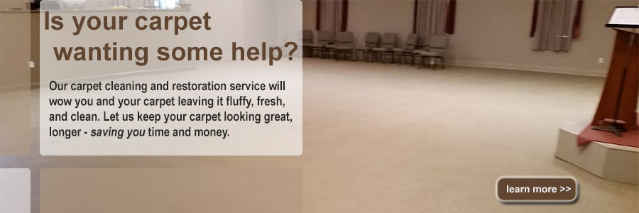 Carpet Cleaning Brandon FL