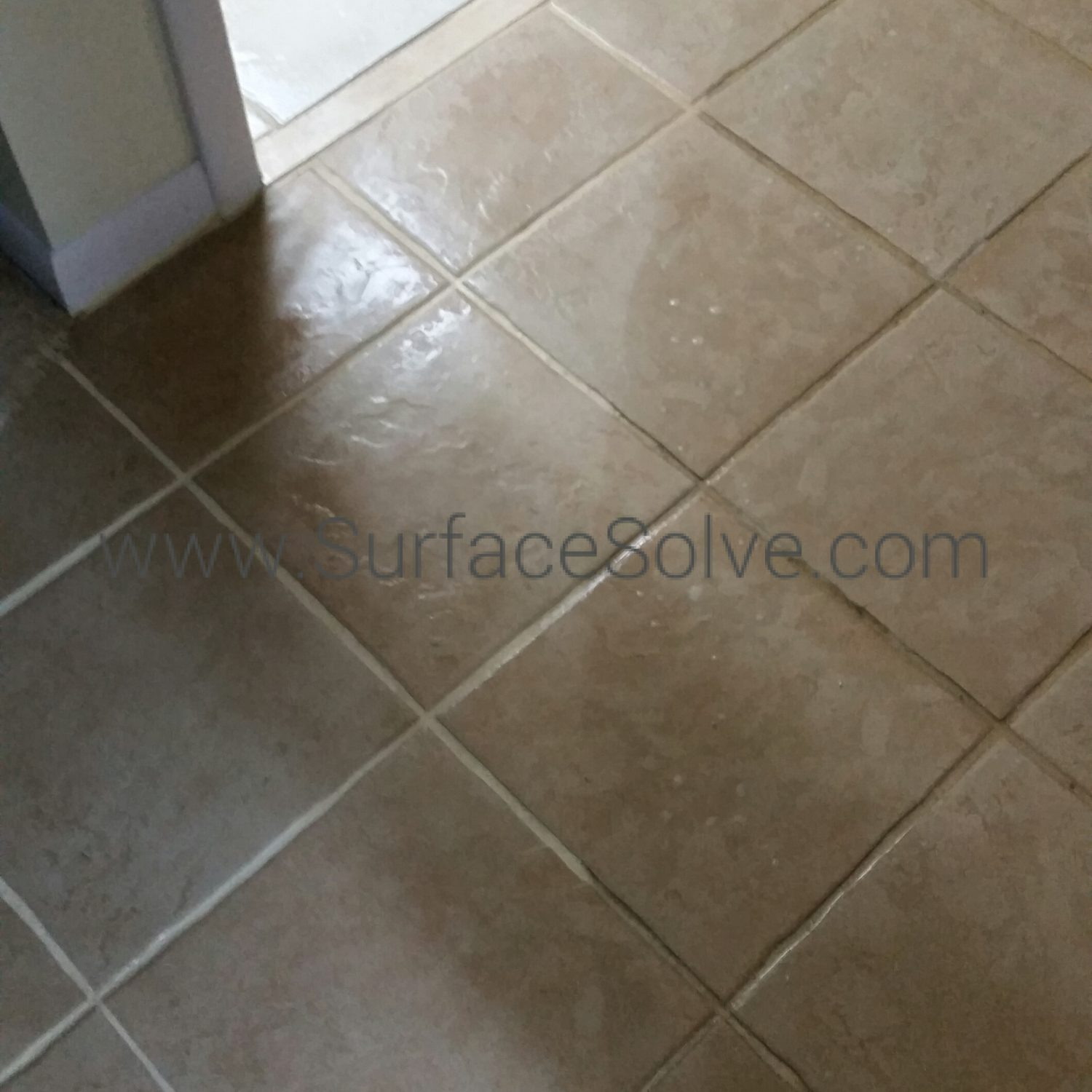 Tile cleaning Tampa SurfaceSolve